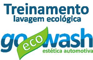 treinamento_lavagem_ecologica