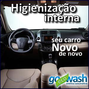 lavagem_ecologica_a_seco_higienizacao_interna_goecowash