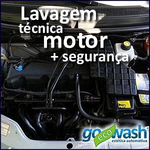 lavagem_ecologica_a_seco_tecnica_motor_goecowash